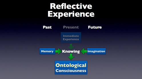 Reflective Experience