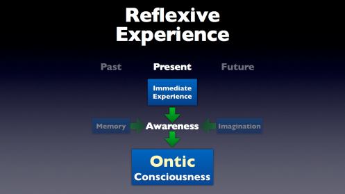 Reflexive Experience